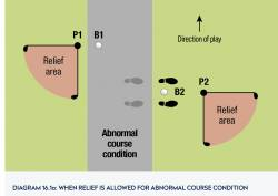16.1a Abnormal Ground Conditions [1]