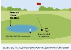 16.1d Abnormal Ground Conditions on Putting Green